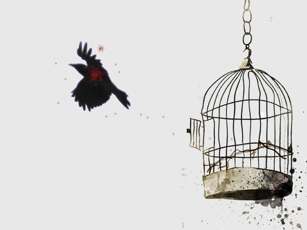 out_of_birdcage_by_blueberrymouseyumi_d1mqw1n-fullview